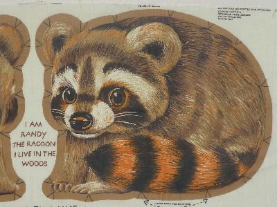 randy raccoon