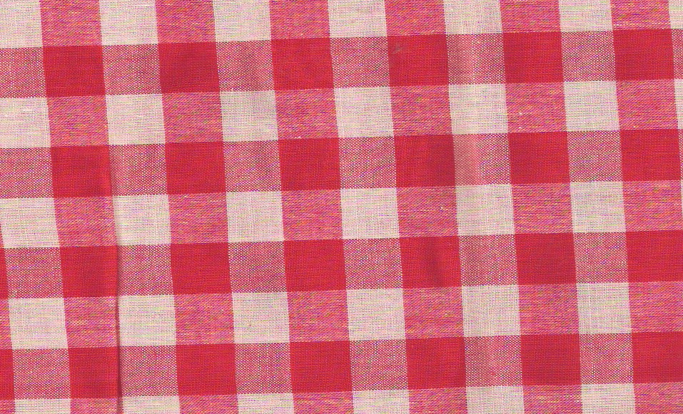 vintage red gingham fabric
